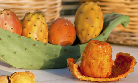 Health benefits of prickly pears