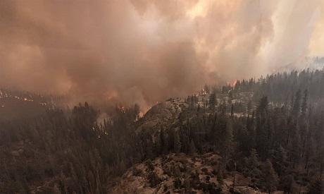 Wildfire, California